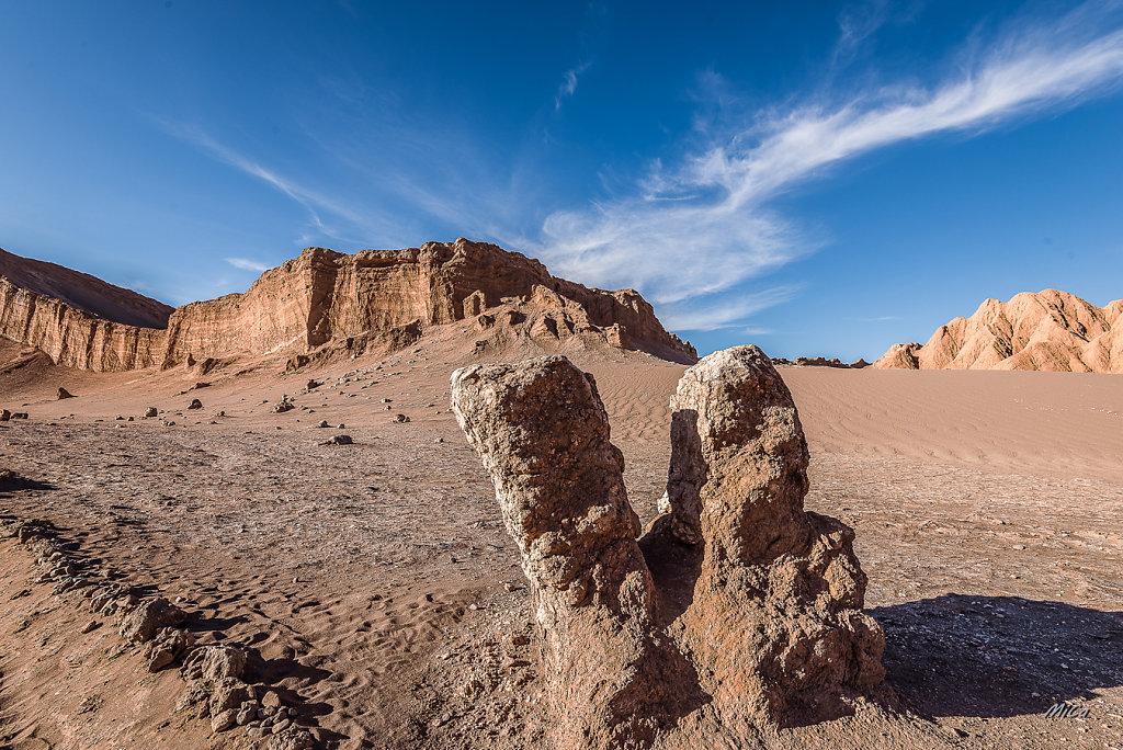 Michel C. - Desert gate