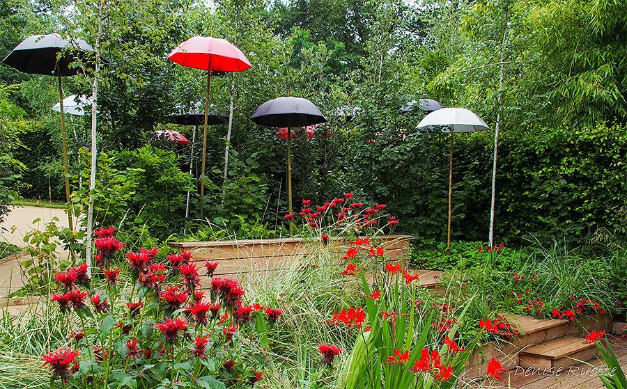 Denise - Zen Gardens