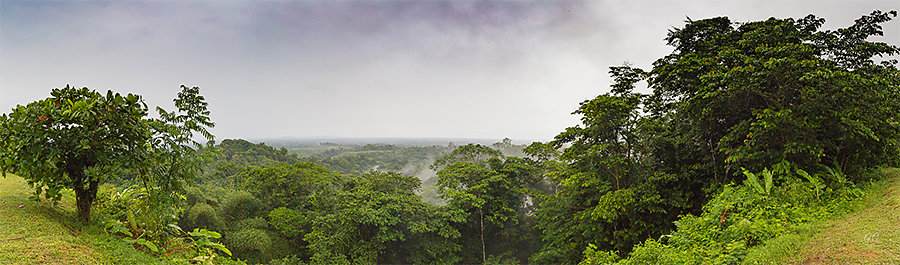 Gaëlle - Panorama